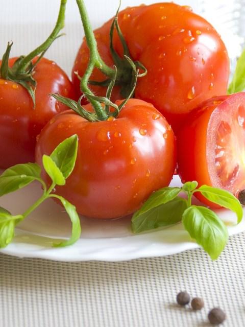 pasta-de-tomate