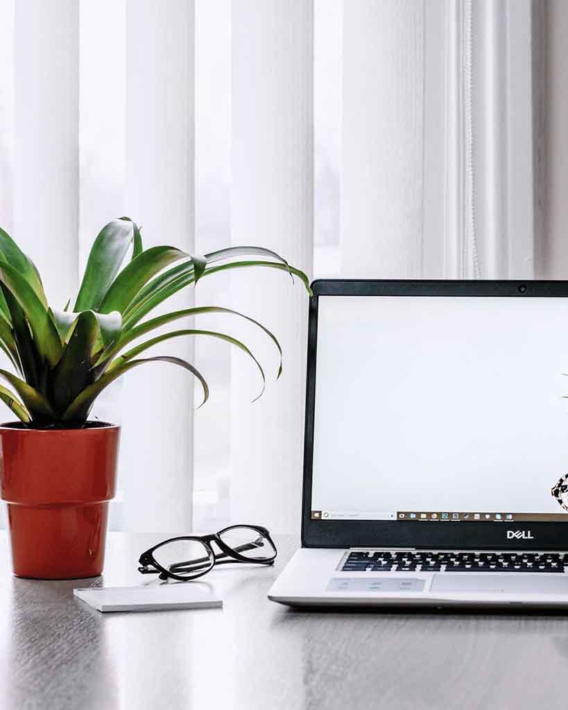 notebook e vaso de planta