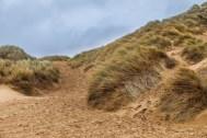 Dunes under grey skies, 1 of 3.