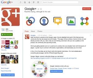 Página G+ Google
