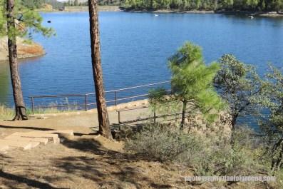 Lynx Lake (20 of 24)