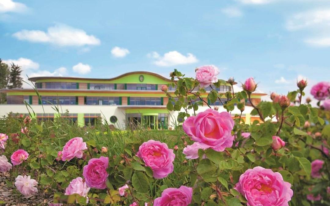 Rosengarten von PRIMAVERA LIFE in Oy-Mittelberg
