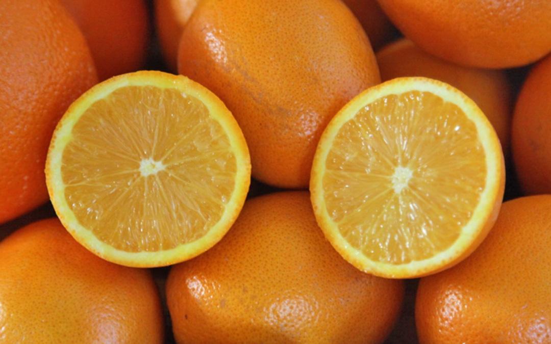 Duft-Reisende – Orangen