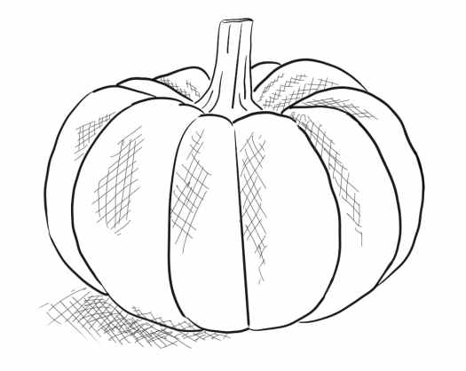 pumpkin doodle from my phone