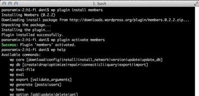 WP Cli running in a terminal