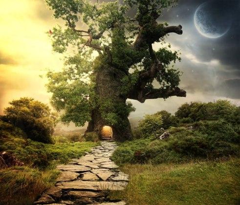 creating-setting-tree