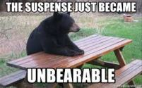 suspense bear