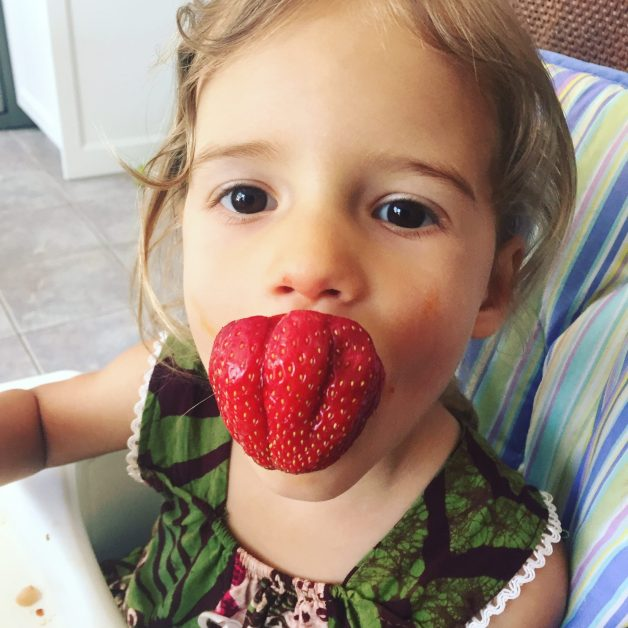 phases to fix picky eating