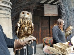 He didn't have my Hogwarts letter. :(