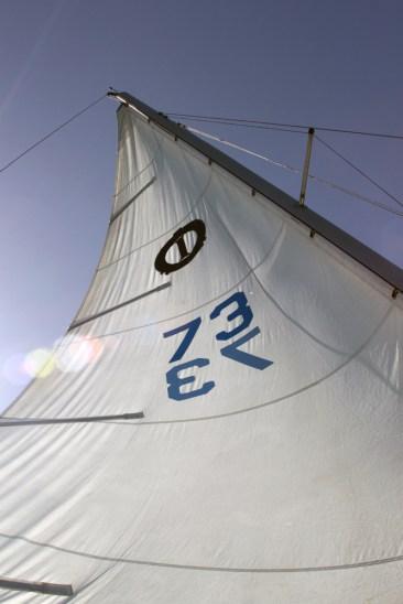 Sail.72dpi