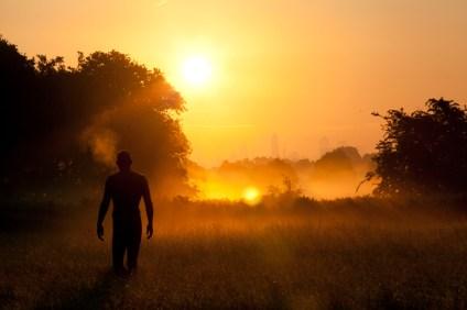 Dawn in Richmond Park 2013