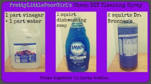 cheap diy cleaning spray