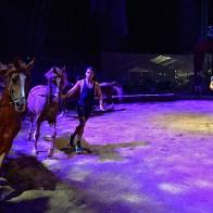 Cirque Gruss Béziers