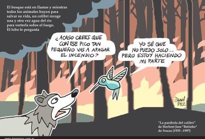 """""""colibri"""" por Daniel Paz"""