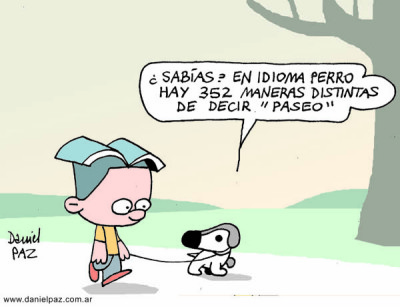 """paseo"" por Daniel Paz"