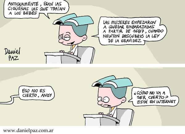 """cigüeñas"" por Daniel Paz"