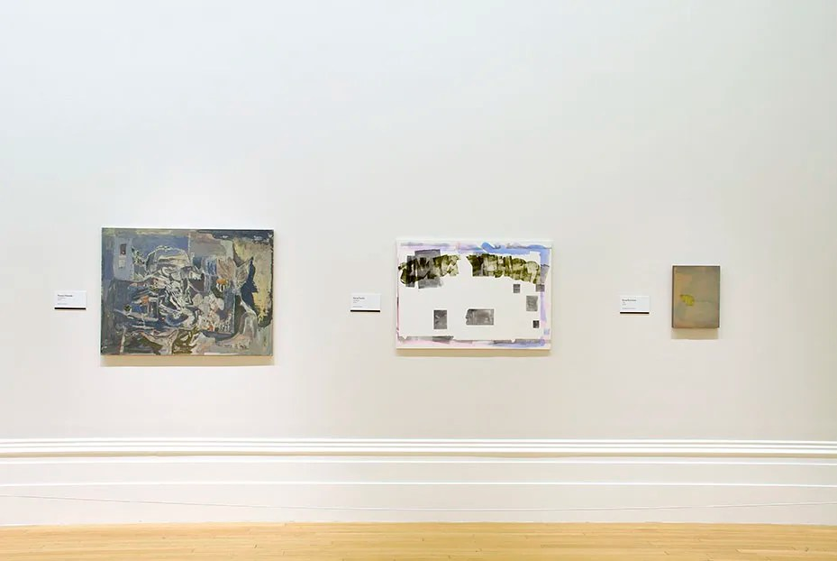 Installation view John Moores Painting Prize, Walker Art Gallery, Liverpool, 2014 – Daniel Pettitt