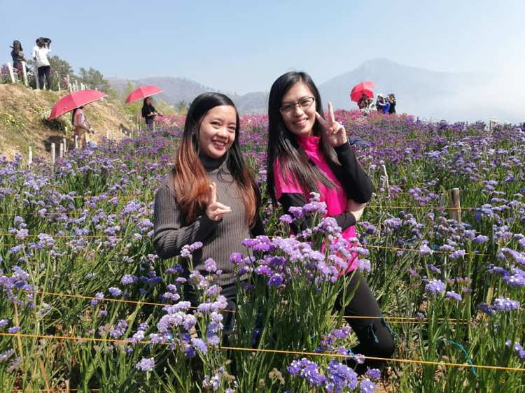 Northern Blossom Farm is one of the tourist spots in Benguet