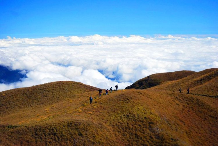 Mt Pulag is the third highest mountain in the Philippines