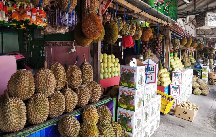 Magsaysay Fruit Stand in Davao City. One of the tourist spots in Davao City.
