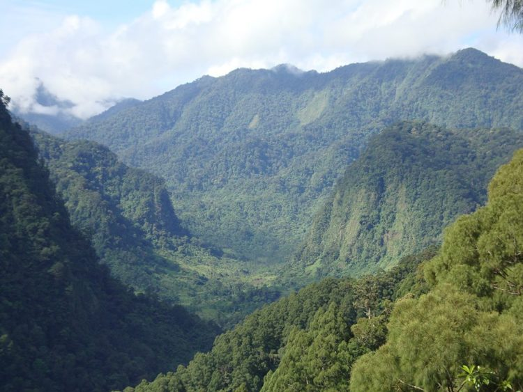 Mount Malindang is one of the tourist spots in Misamis Occidental