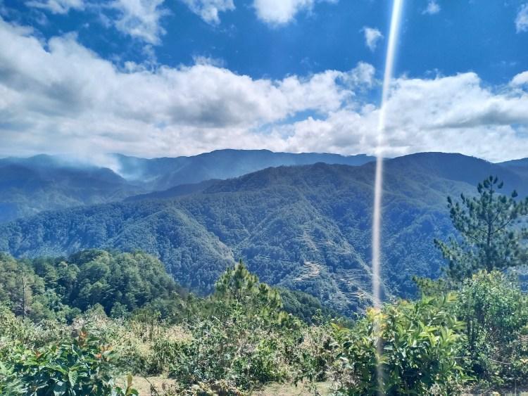 Forest views from Marlboro Country/Marlboro Hills Sagada
