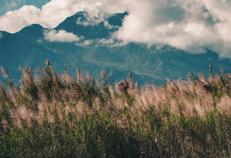 Mount Talinis is one of the best Negros Occidental tourist spot/destinations