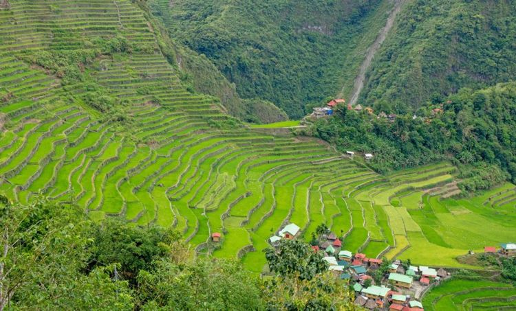 Batad Rice Terraces is one of the best rice terraces of the Philippine Cordilleras