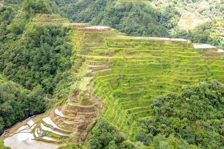 Banaue Rice Terraces is one of the best rice terraces of the Philippine Cordilleras