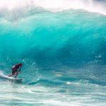 North Shore Oahu Tour