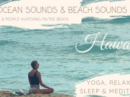 Ocean Sounds & Yoga at the Beach