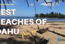 Puaena Beach Best Beaches of Hawaii