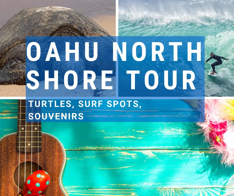 Oahu North Shore Tour