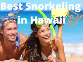 Best Snorkeling Hawaii
