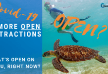 5 MORE Open Activites Oahu - Right NOW