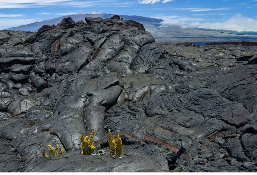 Lava fields at Mauna Loa