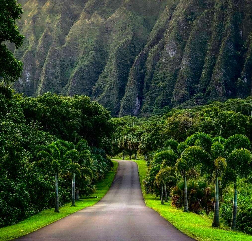 Hoʻomaluhia-Botanical-Gardens-Kaneohe. Famous Instagram location on Oahu.