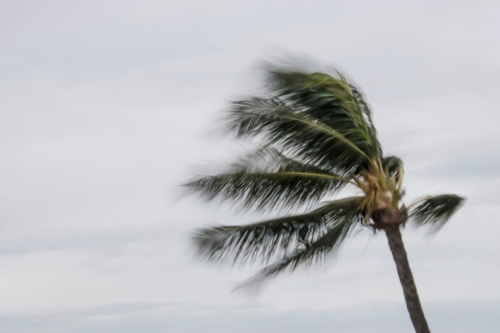 Weather in Hawaii can sometimes bring strong winds.