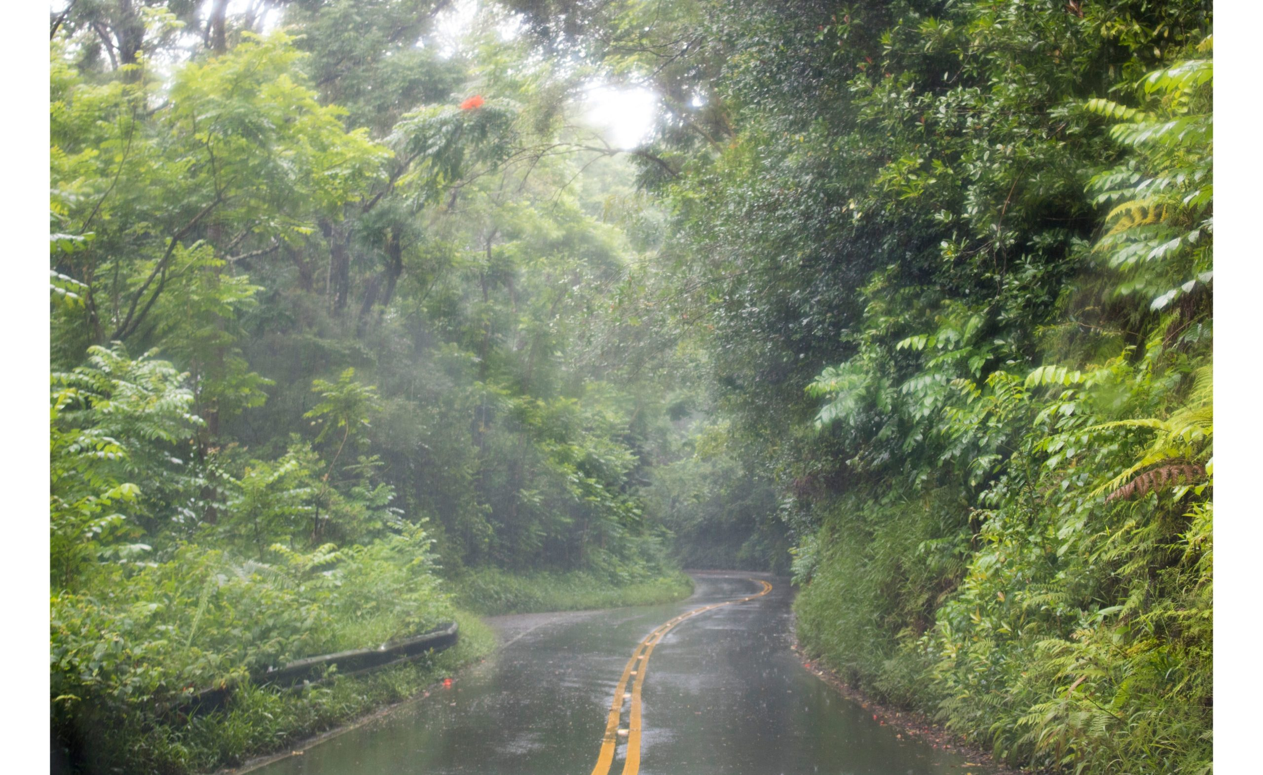 Weather in Hawaii can be rainy