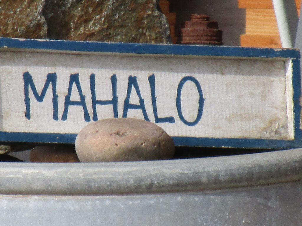 Mahalo is one of the commonly used Hawaiian words.