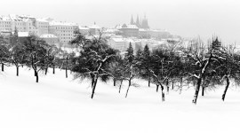 Prague Snowfall | Hradcany Castle Orchard