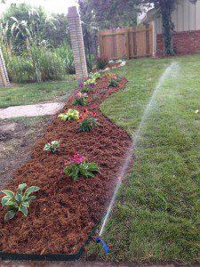 landscaping ideas irrigation