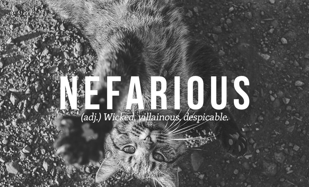 The most beautiful words in the English language: Nefarious