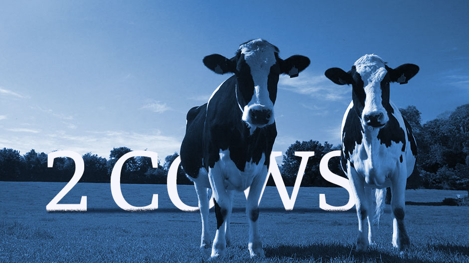 Funny graphics of 2 cows explaining economics