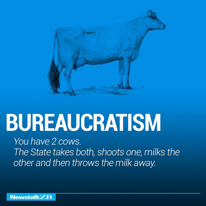 Bureaucratism: You have 2 cows