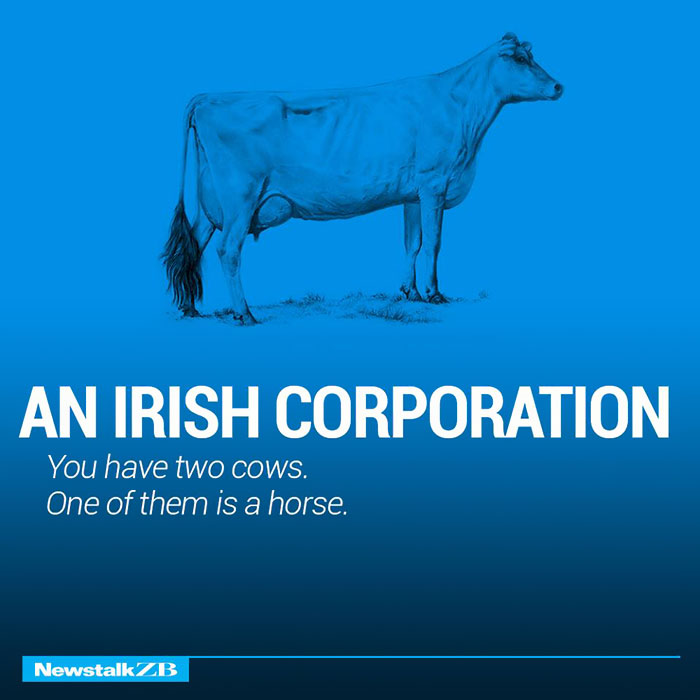 An Irish Corporation: You have 2 cows