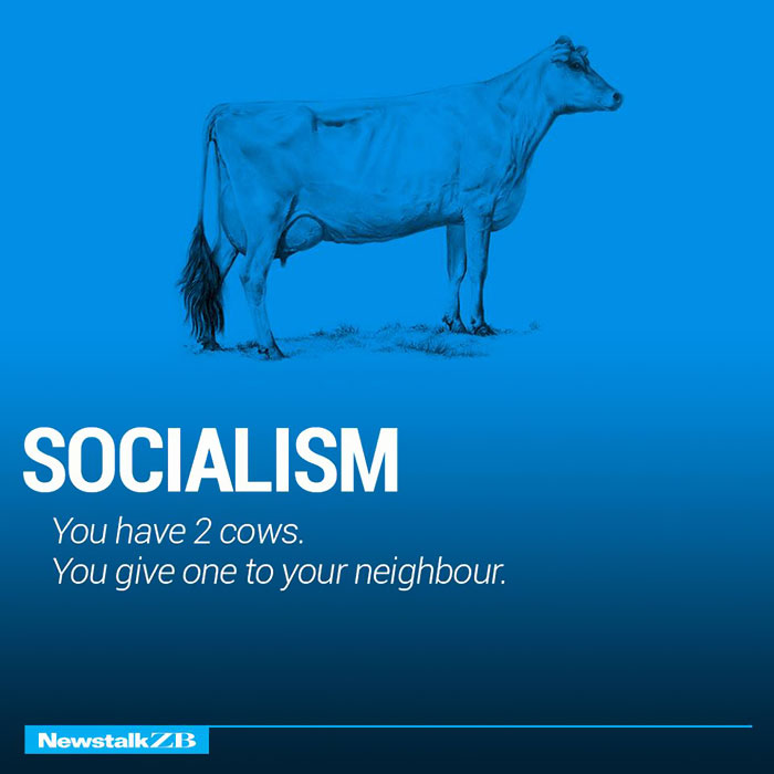 Socialism: You have 2 cows