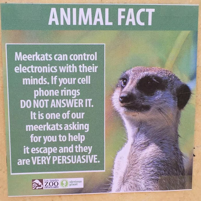 fake-animal-facts-los-angeles-zoo-2