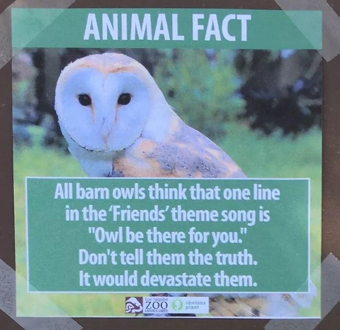 fake-animal-facts-los-angeles-zoo-5