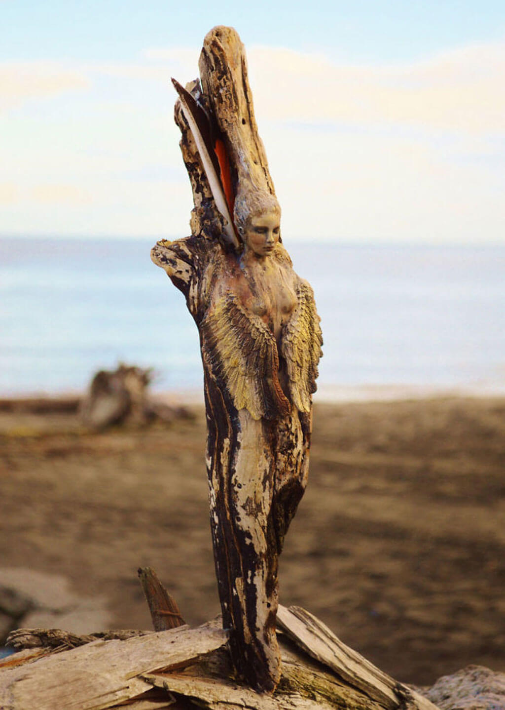 Driftwood sculptures